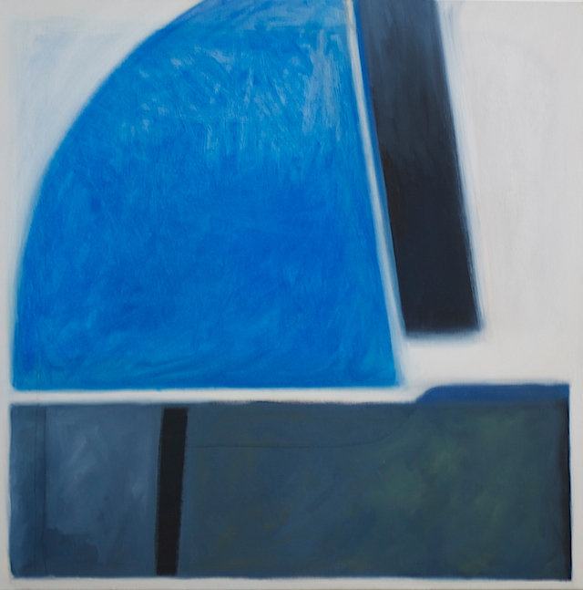 BlueSection30x30-2012